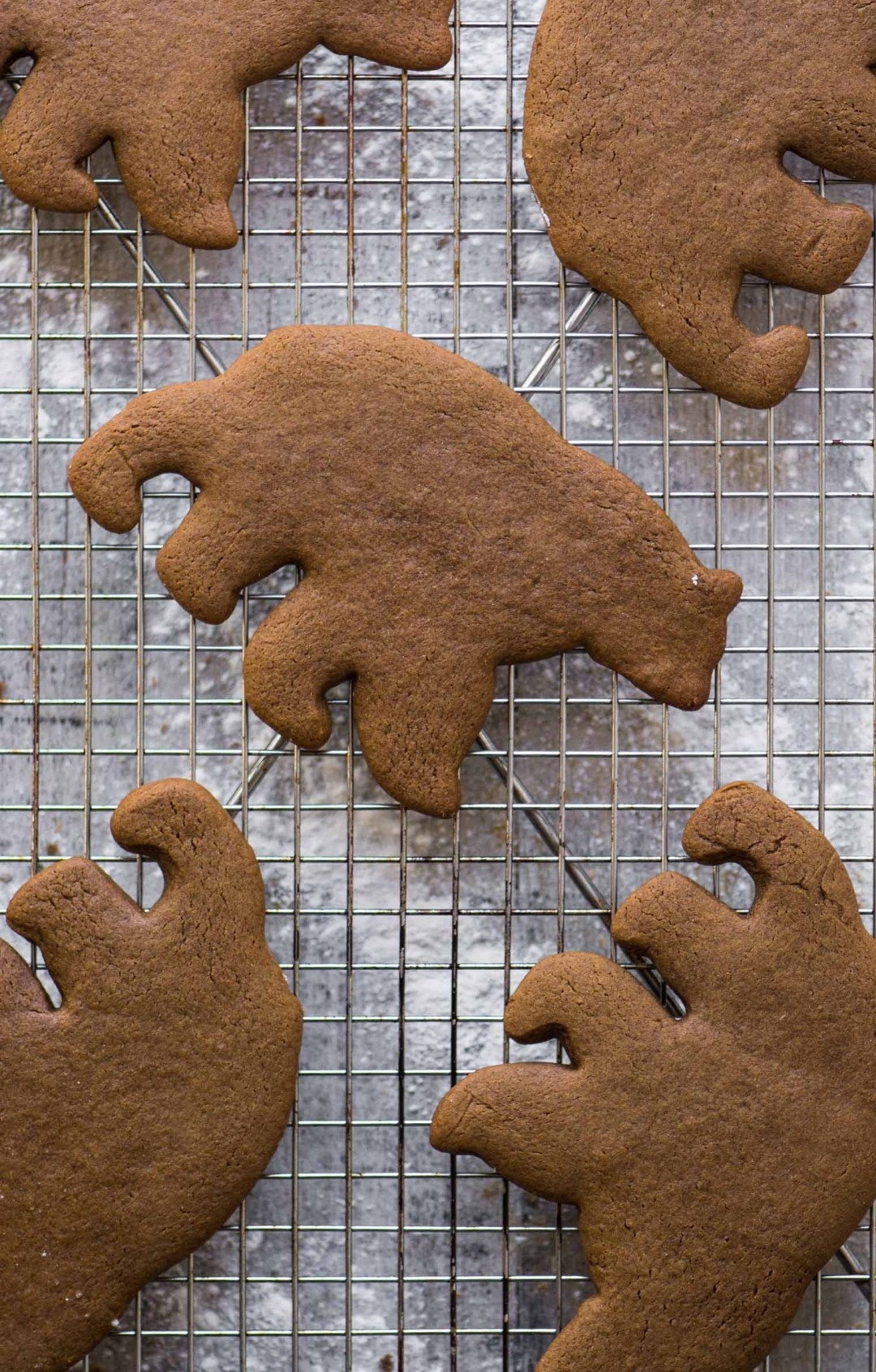 Polar Bear gingerbread cookies on a cooling rack