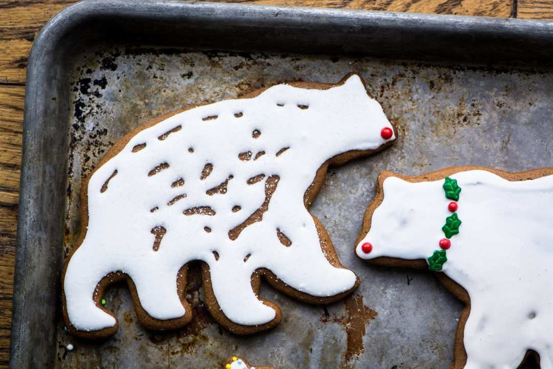 Gingerbread Polar Bears with icing on a baking sheet