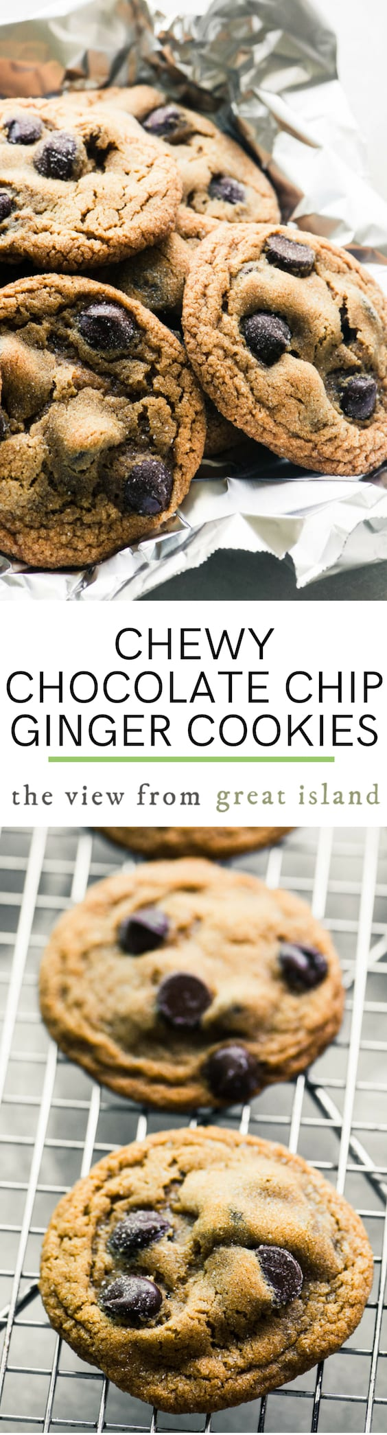Chewy Chocolate Chip Ginger Cookies ~ these spiced molasses cookies have been upgraded with a bit of dark chocolate for a 'best of all worlds' holiday cookie. #recipe #easy #molasses #chewy #Christmascookie #spicecookie #chocolatechipcookie #holidays #soft #fresh @crispy #dessert #cookie