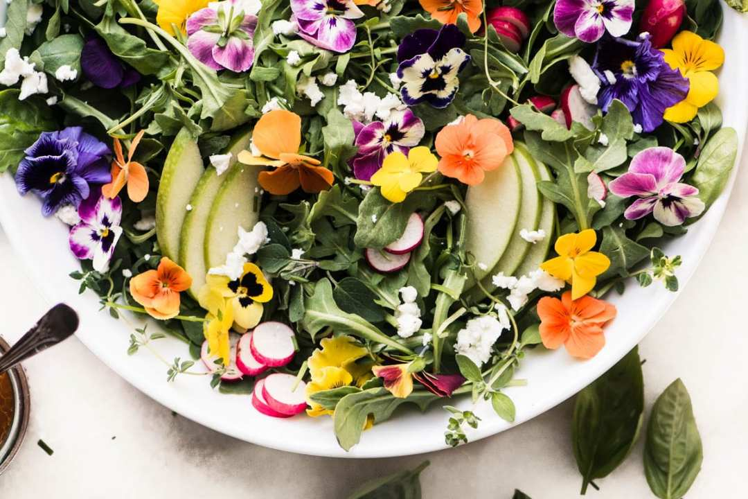 Colorful Winter Pansy Salad