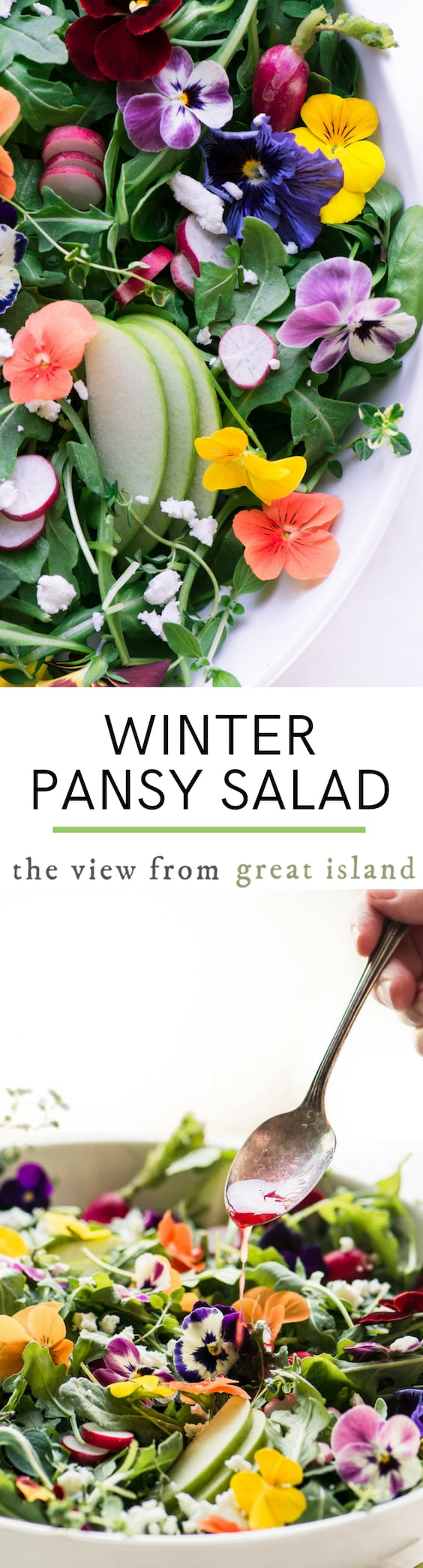 Winter Pansy Salad with blood orange vinaigrette ~ a colorful salad for your fall and holiday menus, with edible pansies that thrive in cooler months. #salad #edibleflowers #pansies #sidedish #greens #healthy #holiday #sidedish #fallsalad