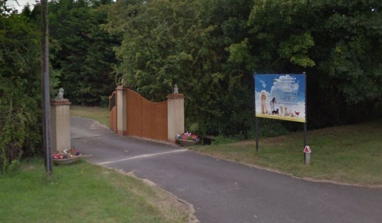 Dog Kennels Pleads Guilty to Animal Welfare Offences