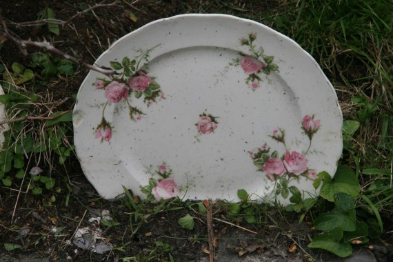 Gorgeous Plate!