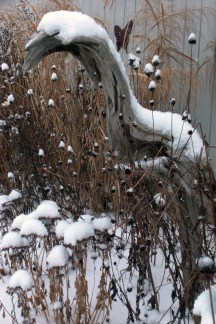 The driftwood sculpture and seed heads of Black-eyed Susans, Monarda, and Coneflowers catch the snow in the Winter of 2011. This is my Winter bird feeder.