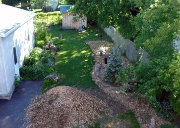 Still spreading the not-so-freshly chipped mulch stage 3.