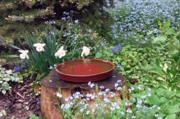 Spring 2011. The Woodland Edge is decorated with natural elements like this tree stump (the Box Elder lives on), with a ceramic tray for a bird bath.