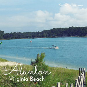 Alanton neighborhood in Virginia Beach, for Katie Zarpas