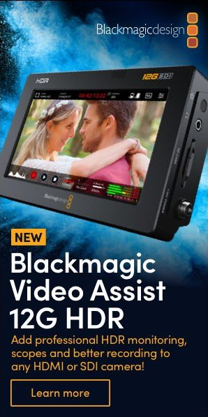 BMD_Video_Assist_300x600
