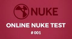 Online NUKE test