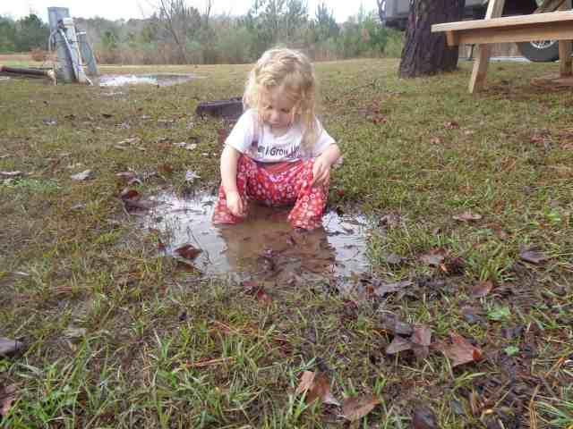 chelsea wilcox mud