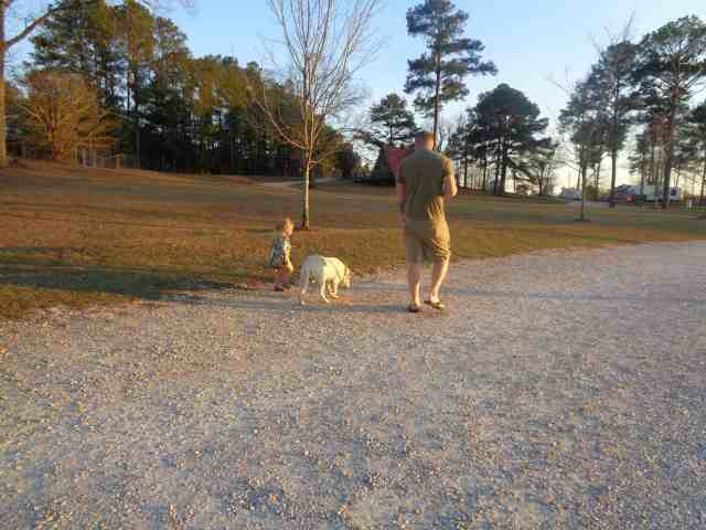 wilcox virtual campground walk