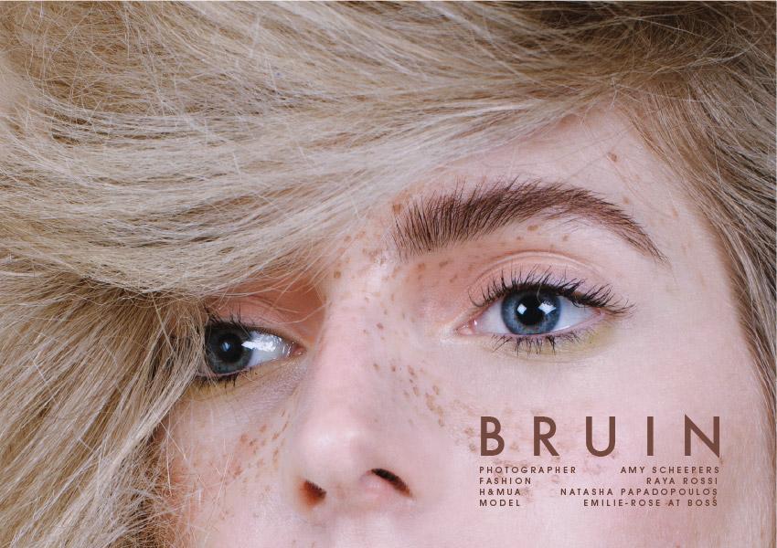 aff67_bruin_01