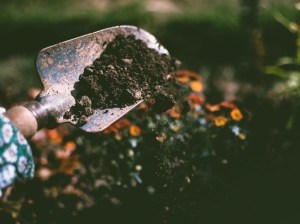 Eco-Friendly Tips for First-Time Homeowners