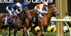 Five Melbourne Cup Superstitions To Watch Out For Before Making Your Flemington Picks