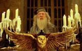 Head Teacher – Albus Dumbledore