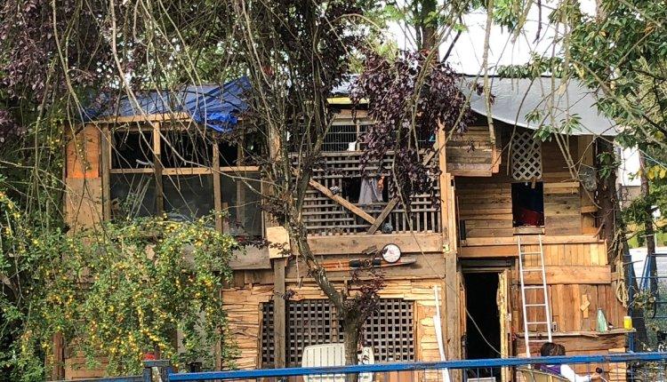190902 DETTLING – Dwaynes cabin in Anita Place was a symbol of resistance
