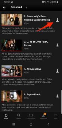 Netflix Press The Download Button