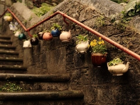 Teapots by Gloomtreehouse via Beautiful Portals Tumblr