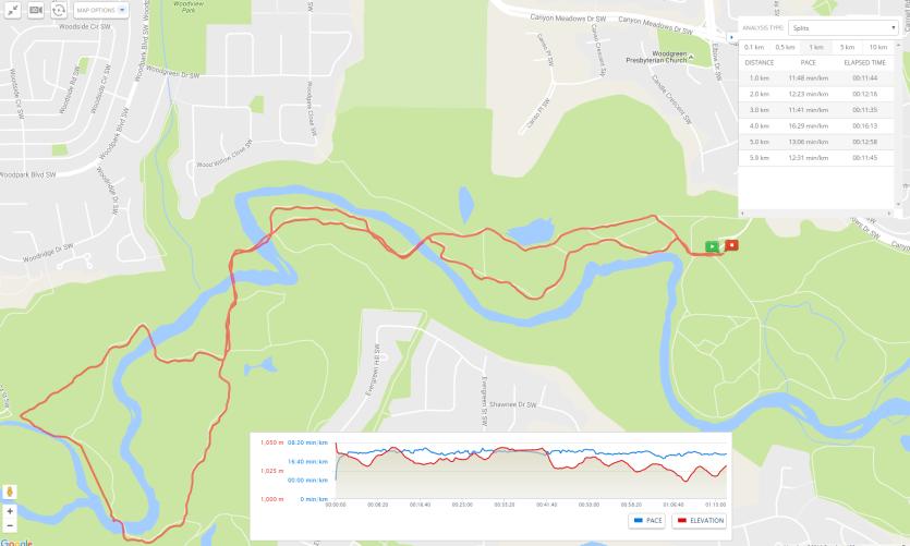 Fish Creek August 8 2016