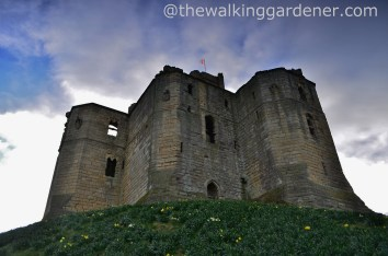 Warkworth Castle (4)