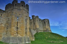 Warkworth Castle (7)