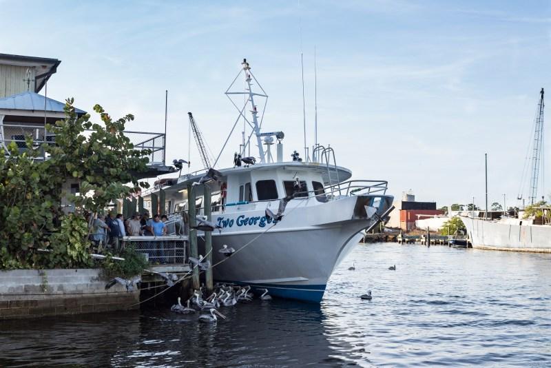 boat tours at tarpon springs
