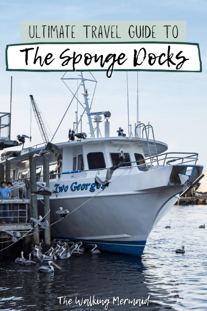 Boat tour at The Sponge Docks at Tarpon Springs, Florida