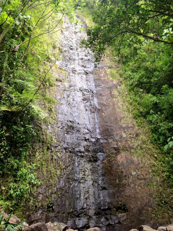 Manoa Falls in Honolulu, Hawaii