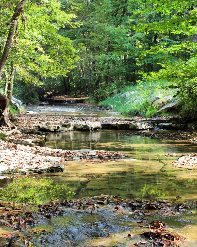 Rotary Park Clarksville Tennessee stream creek water