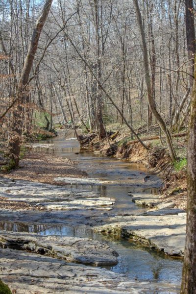 river stream flowing through rocks nature rotary park clarksville tennessee