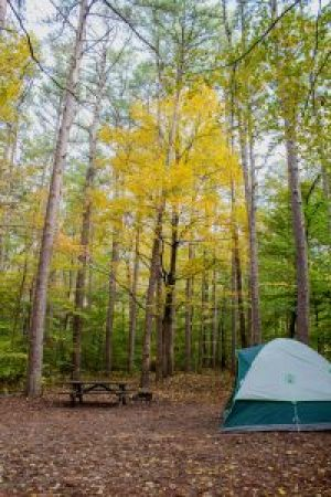 shawnee national forest camping redbud campground
