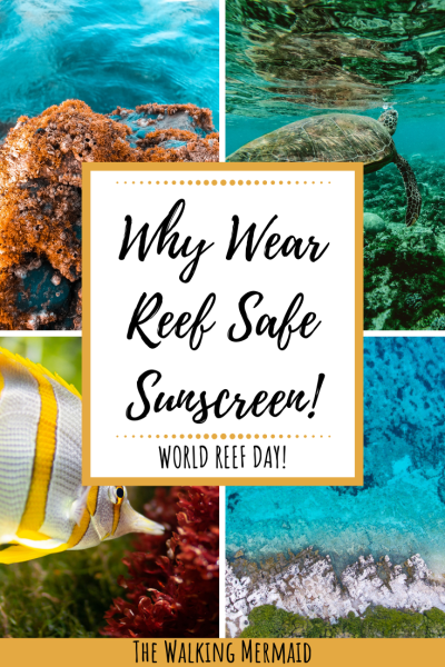 reef safe sunscreen marine life ocean coral overlay pinterest pin
