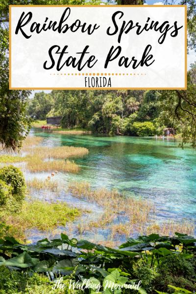 rainbow springs state park florida pin image pinterest overlay