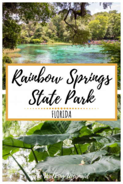 rainbow springs state park florida pin image pinterest overlay