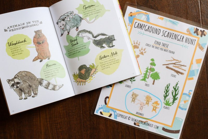 natures anatomy book camping scavenger hunt game activity for kids laying on wood floor flat layout
