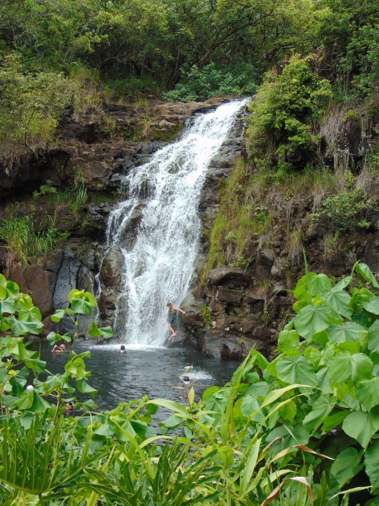 Waimea Falls with people swimming at the waterfall. Posted on a travel guide that features the best things to do with kids on Oahu, Hawaii.