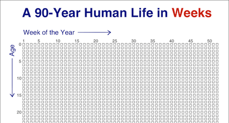 90 year human life in weeks