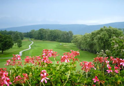 vermont flowers and hills