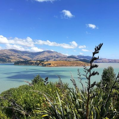Beautiful New Zealand