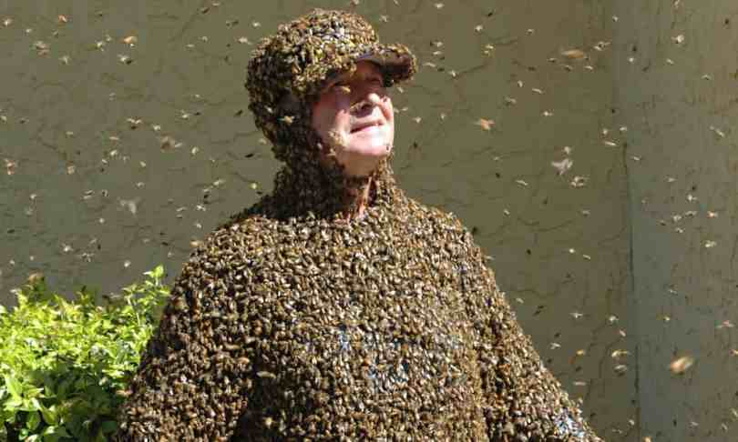 A man covered in bees
