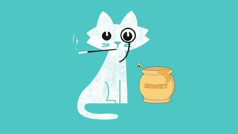 smoking-cat-with-honey