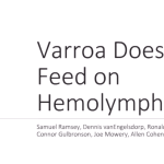 Samuel Ramsey Varroa Research