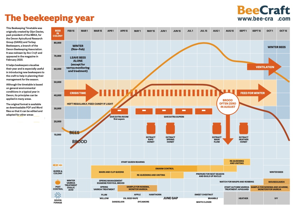 Chart of the Beekeeping Year