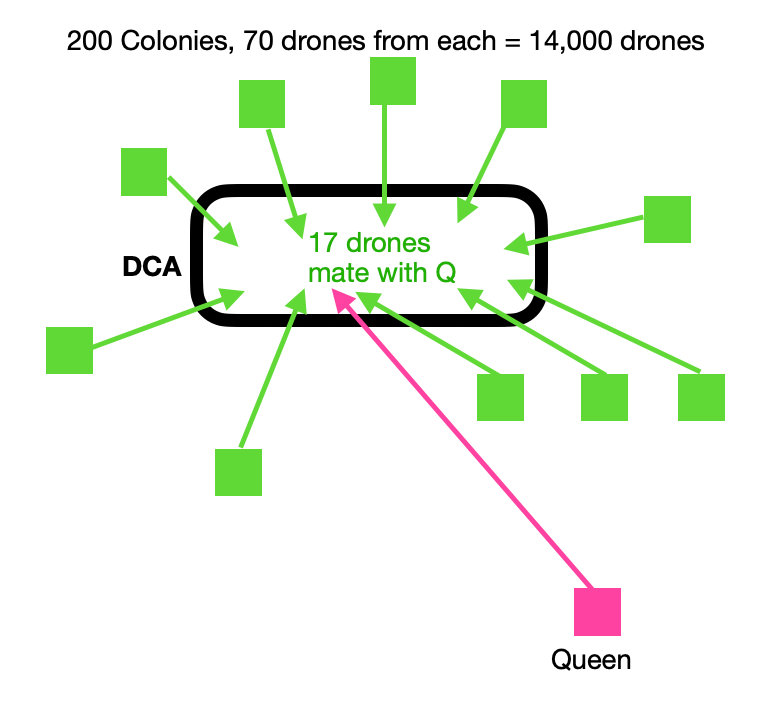 Drone Congregation Area
