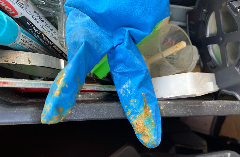 Gloves sticky with propolis