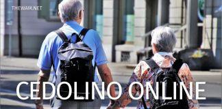 Cedolino pensione dicembre su www.inps.it guida al pagamento