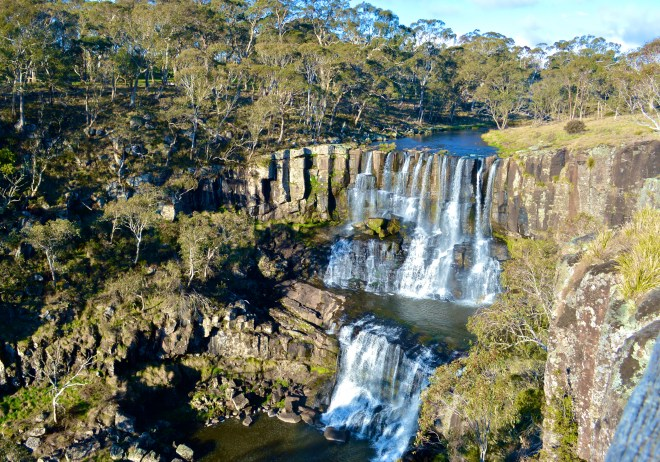 Ebor Falls Waterfall Way NSW
