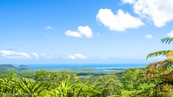 Cape Tribulation Lookout Queensland