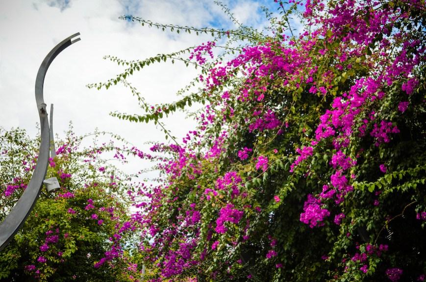 Photo of Brisbane Queensland