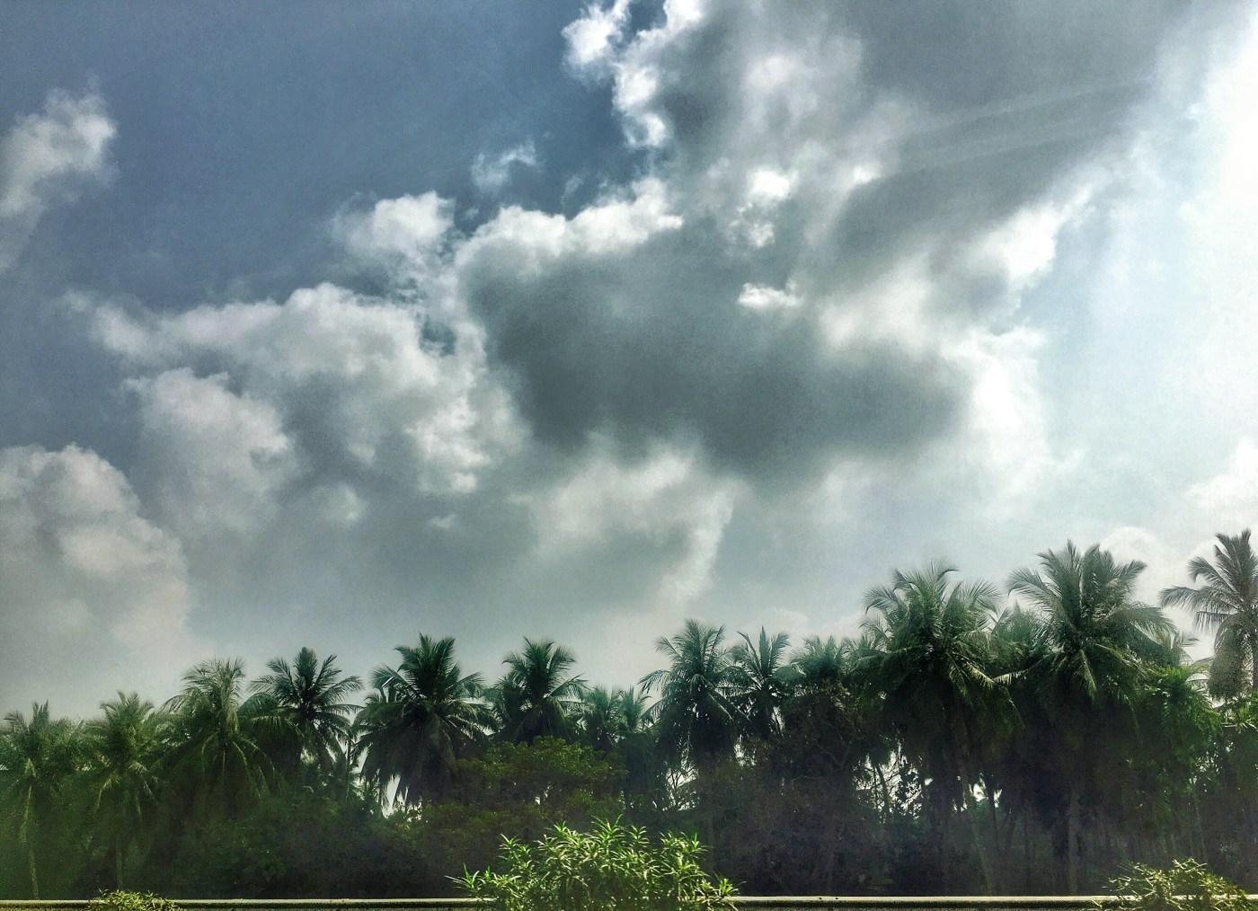 Tourist Places of Odisha | Countryside view of Odisha India